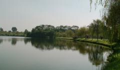 东莞松山湖好玩吗?