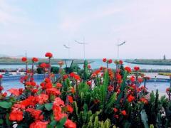 惠州看海之大甲岛、小甲岛、喜洲岛、三门岛、东升岛…