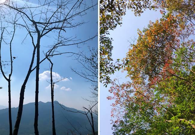 五五户外勇登从化老虎头五指山穿越 从化千米高峰连登