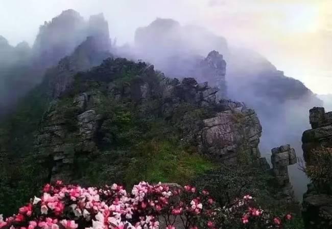 五五户外罗坑大草原 秘境茶岩顶 露营烧烤