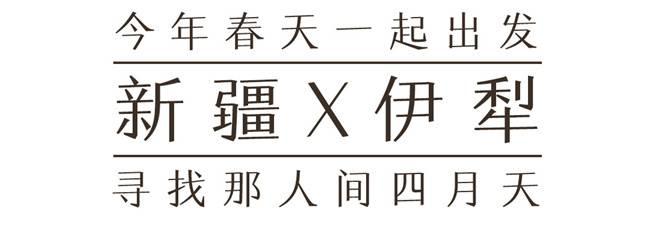 绝色新疆【五五户外】
