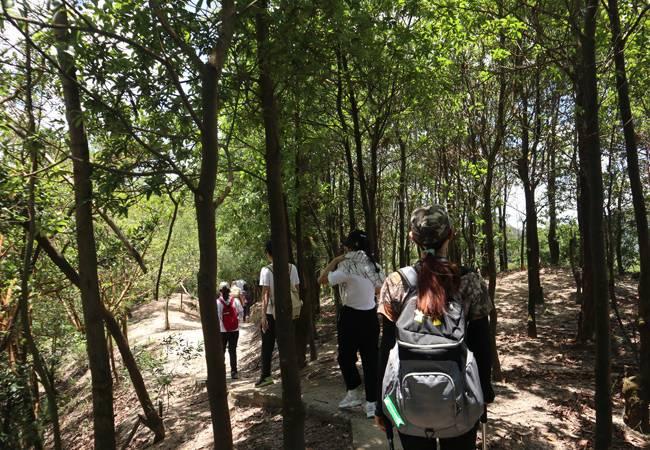 五五户外中山古丝绸之路 徒步穿越吃乳鸽