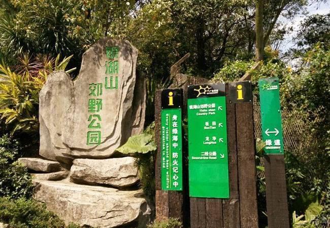 五五户外深圳银湖山郊野公园夜徒