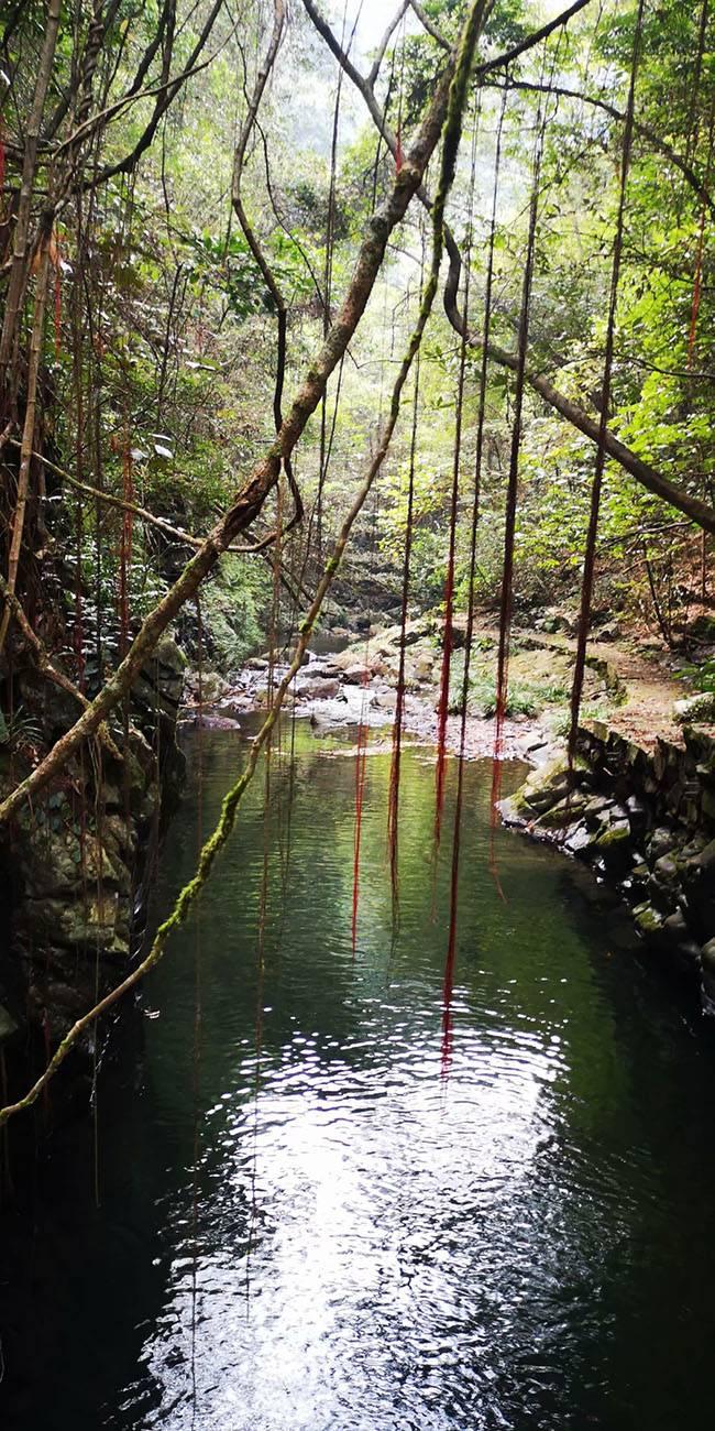 五五户外河源桂山溯溪穿越(8-10)