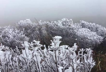 12月17日四方山游记,山顶看霜雪